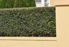 Appletree Flat Barrier wall fencing 2