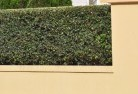Appletree Flat Decorative fencing 30