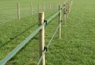 Appletree Flat Electric fencing 4