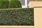 Appletree Flat Privacy screens 30