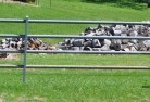 Appletree Flat Rural fencing 18